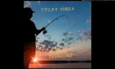 Tocky Vibes ZvirauroMp3 Download
