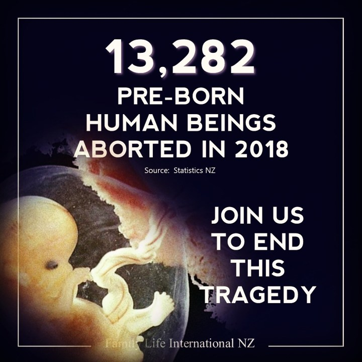 NZ abortion statistics 2018