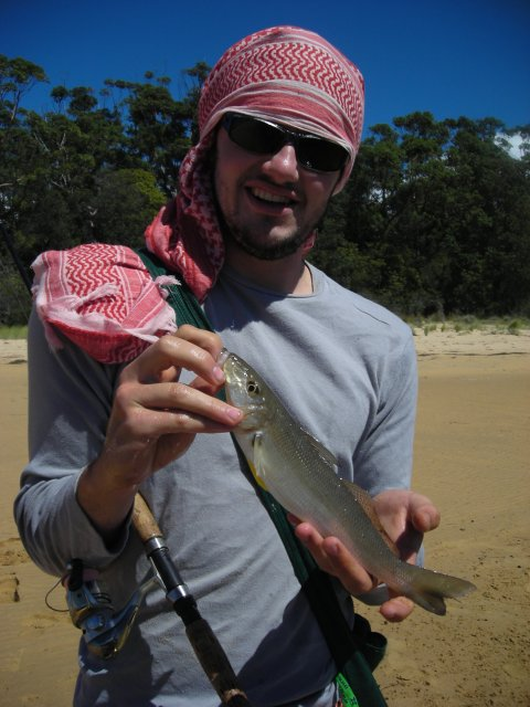 Another popper caught whiting