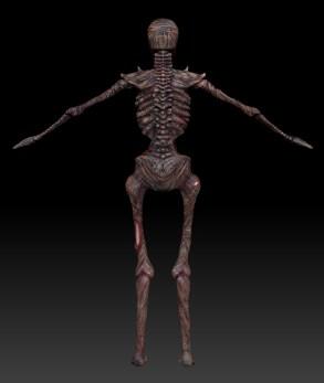 skeletoncolor_back
