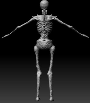 skeletonnocolor_back
