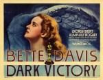 darkvictory poster
