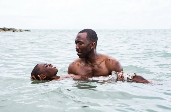 moonlight movie review