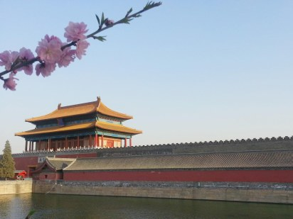 Springtime flowers and the Forbidden Palace from the outside, Beijing