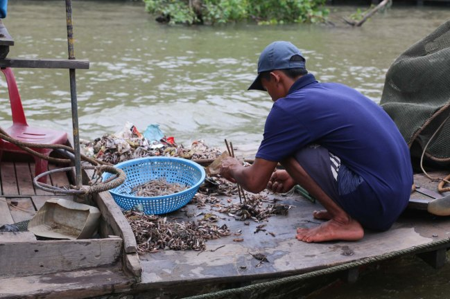 Local Small Fish Sifter