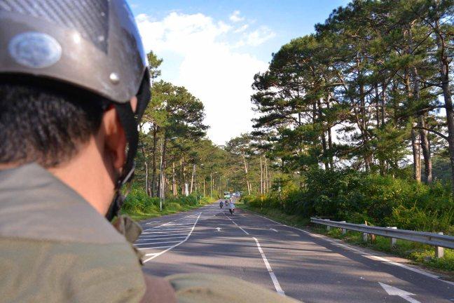 Driving through pine trees in Da Lat Vietnam