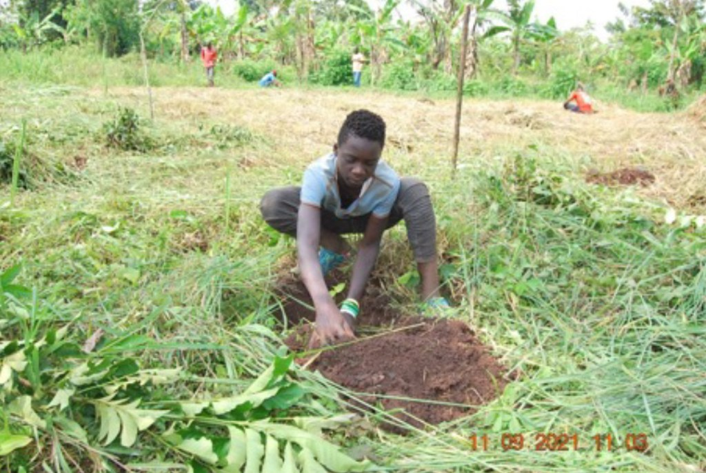 A young volunteer giving life to a tree on planting day