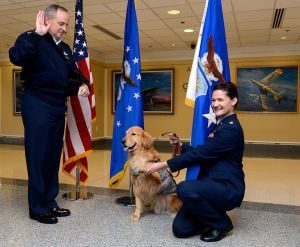 Air Force Chief of Staff Gen. Mark Welsh promotes Goldie the therapy dog to the rank of major during a ceremony at the Pentagon Nov. 12.