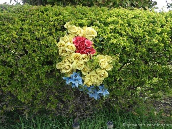 Flower selection in a hedge along Le Tour De Yorkshire 2015 route