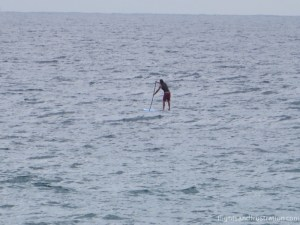 A paddleboarded enjoys the water