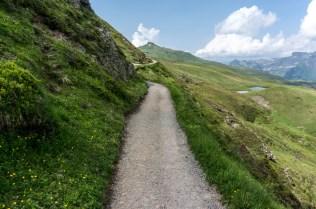 Mountain Path, Swiss Alps