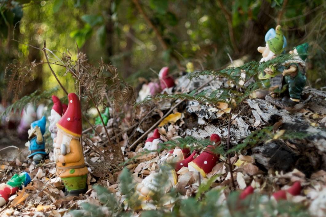 gnome (1 of 1)-2