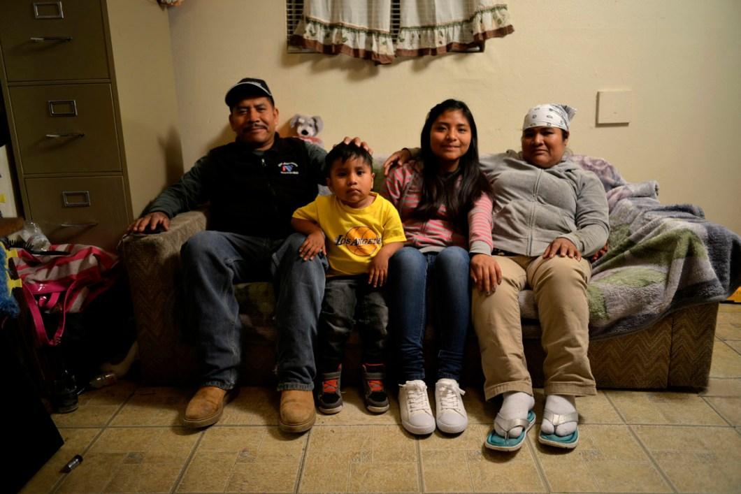 Familia Alondra