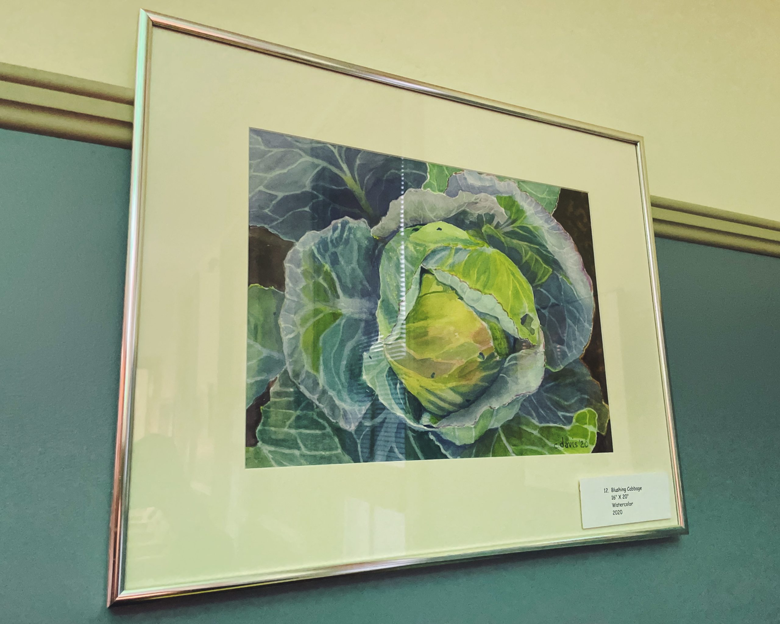 framed watercolor painting of a cabbage