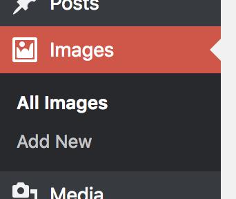 Images Custom Post Type