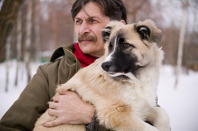 Perro y su amo