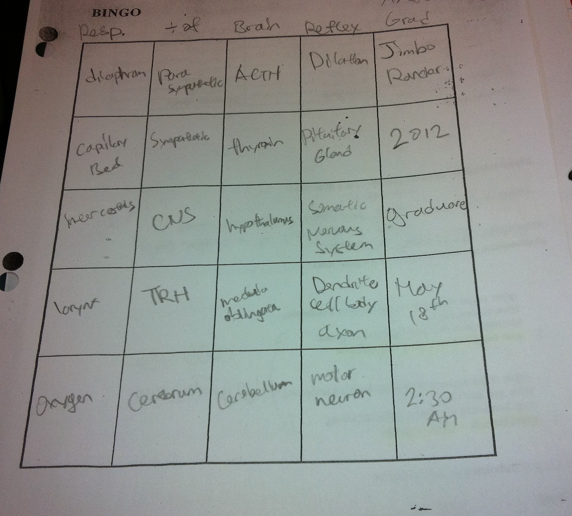 Sick Of Review Worksheets Bingo Everybody Loves Bingo Review Gold