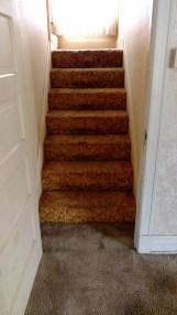 Orange Stair Carpet