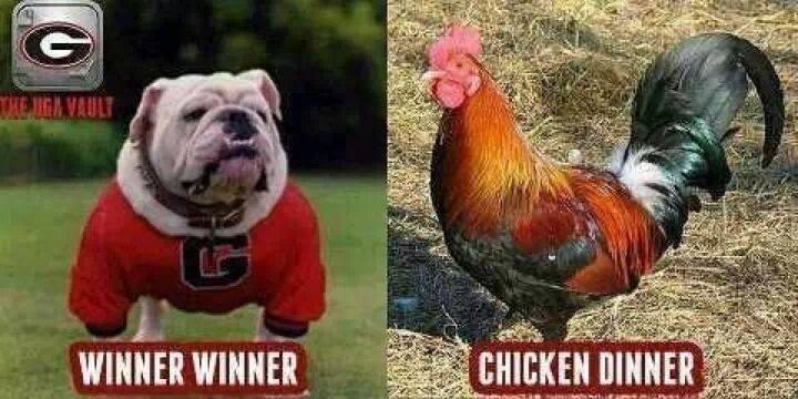 UGA vs South Carolina