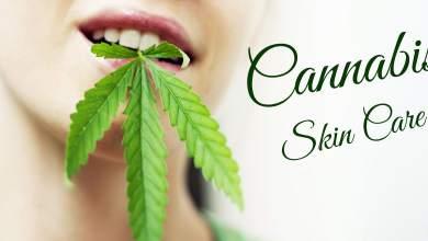 Cannabis Skin Care