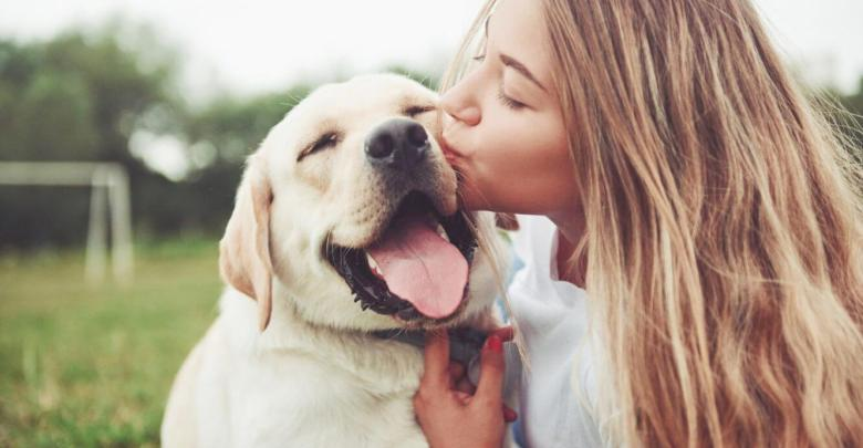 Medical Benefits Of Owning A Pet