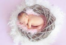 A newborn sleeping in a basket