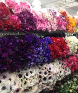 G Page Flower Wholesaler NY Flower District