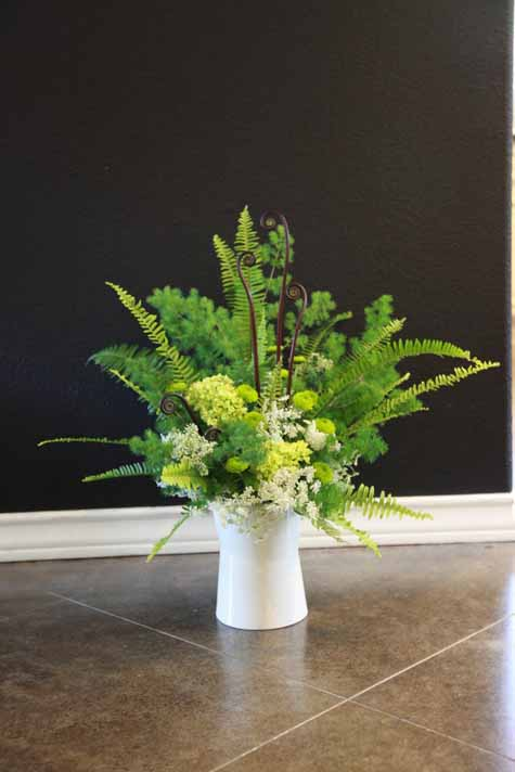 Ferns Ferns Amp More Ferns Flirty Fleurs The Florist Blog
