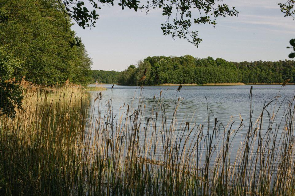 #fotoszorty Majówka w Wielkopolskim Parku Narodowym – fotorelacja