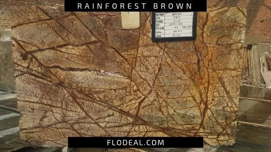 rainforest brown granite slab