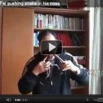 你有把蛇塞進鼻孔的特殊癖好嗎? 中國耍蛇人劉飛的表演