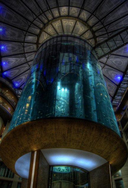 Aquarium-In-Radisson-Sas-Hotel-13