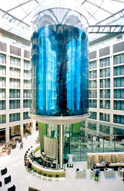 Aquarium-In-Radisson-Sas-Hotel-14