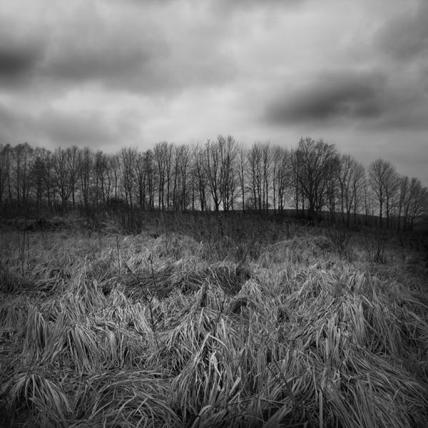 Heckel-Landschaft-8
