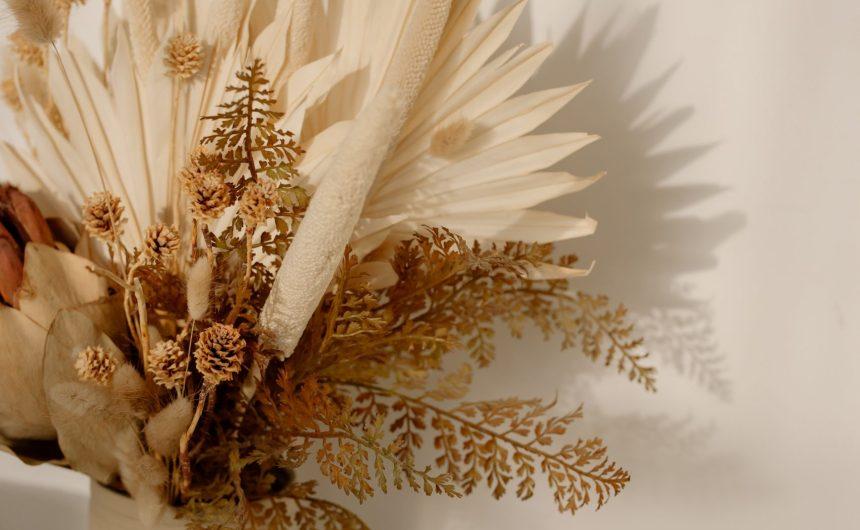 10 benefici dei fiori secchi