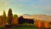 Alba Countryside 4