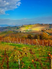 Alba Countryside 6