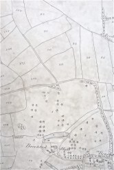 Brocton Township Tithe Map extract, 'Dry Leasow' is field number 89, 'Wet Reins' is 90