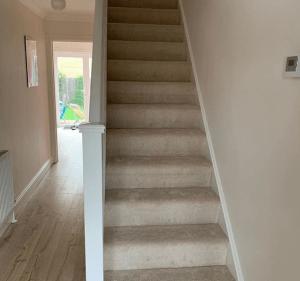 Stain Resistant Carpet Cambridge