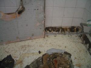 Improper substrate for Ditra