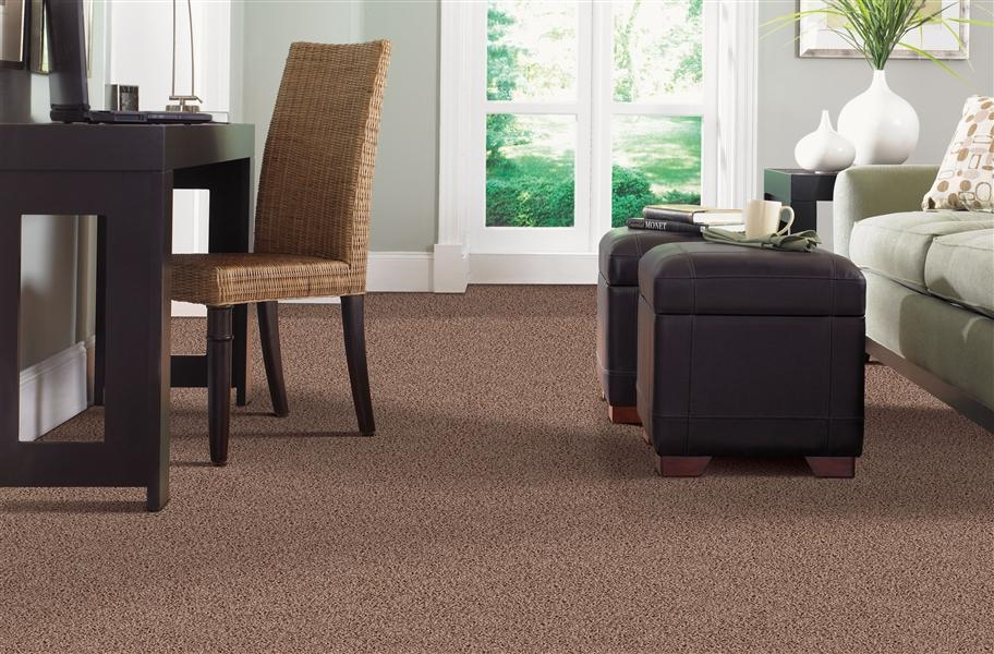 Bedroom Carpet Trends 2020 Novocom Top