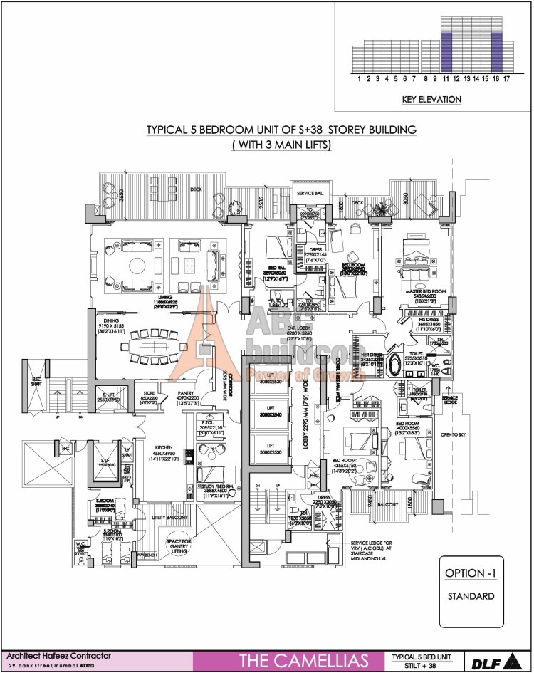 DLF Camellias Floor Plan 5 BHK  + 2 S.R + Store + Study – 9419 Sq. Ft.
