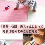 赤ちゃんが頭を打つ衝撃を軽減させたい