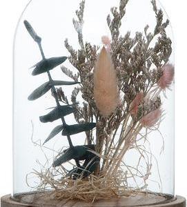 Cloche Fleurs Séchées Rose Selma H17