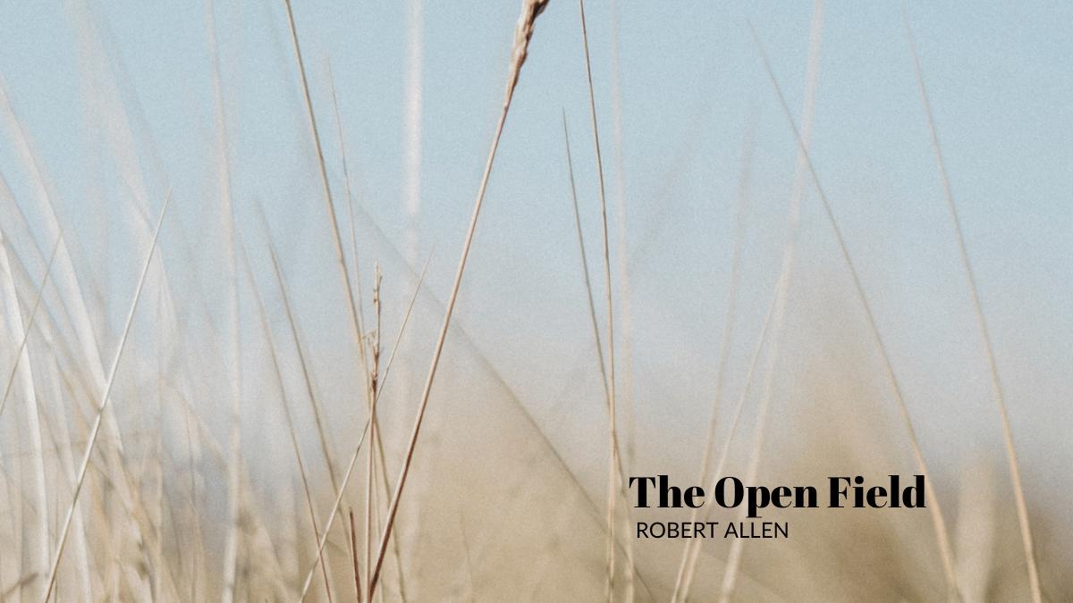 The Open Field by Robert Allen