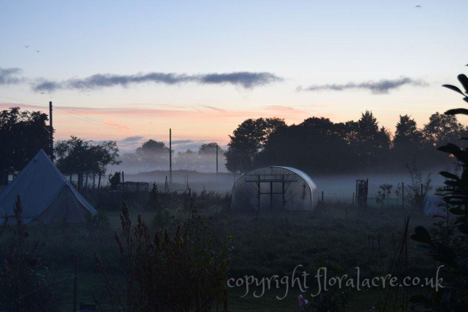 Misty view - October 2018