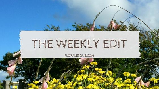 The Weekly Edit Series