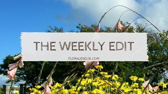 The Weekly Edit Series