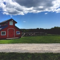 Discovering Ontario: South Pond Farms