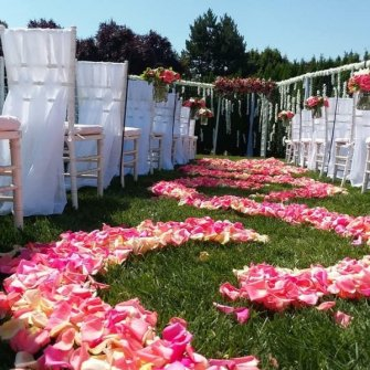 Coral rose petals aisle with arch in the background